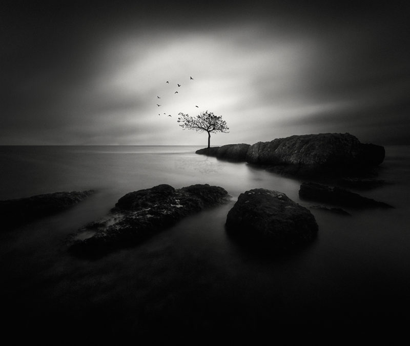 Yucel Basoglu: Dark Beauty